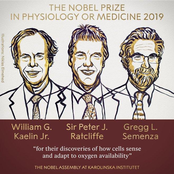 premio-nobel5